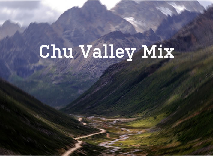 Abel: Chu Valley Mix on Racket Racket