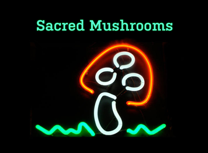 Sacred Mushrooms: A mix bu Joe's Bakery on RR